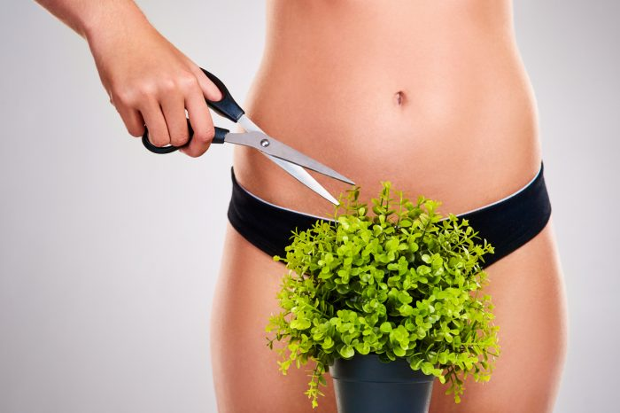 Bikinizone harzen bei nohel - der Schönheitssalon in Linz.